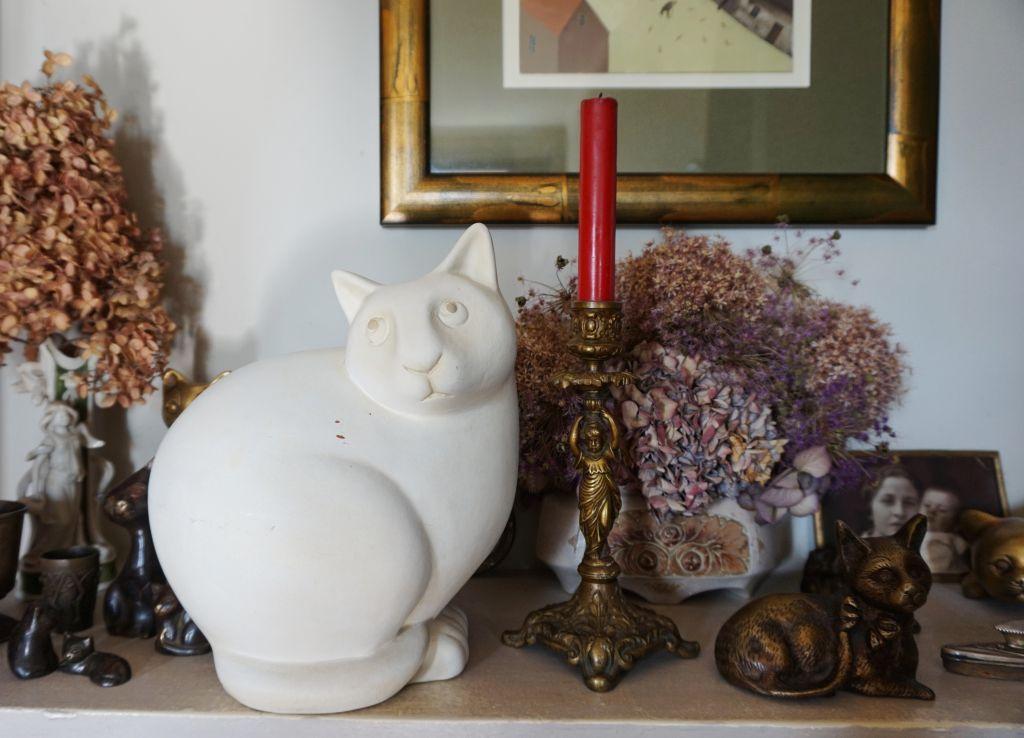 Małgorzata Strzałkowska kolekcja kotów