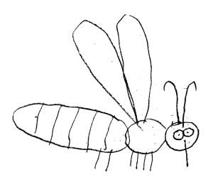 Pszczoły Piotr Socha