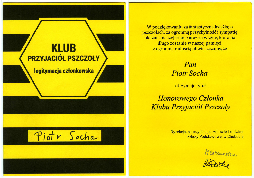"""Pszczoły"" Piotra Sochy"