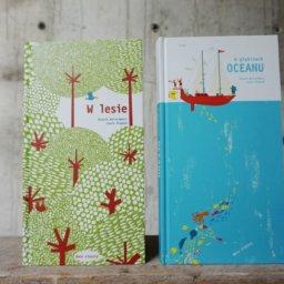pop-up Dwie Siostry książka dla dzieci
