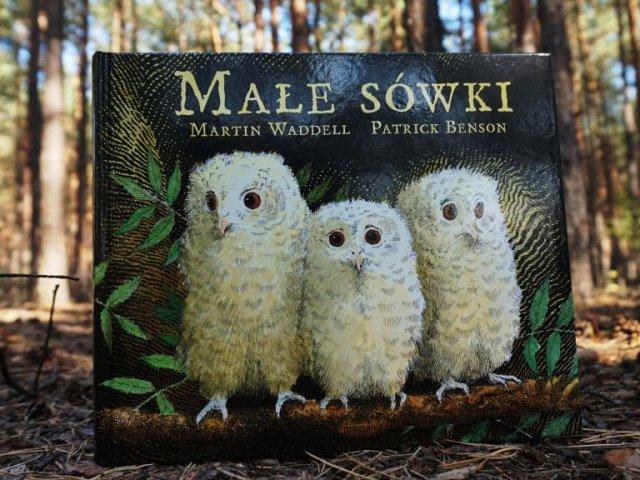 Małe sówki - książka dla dzieci o rozstawaniu się z mamą